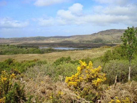 """Résultat de recherche d'images pour """"photos : paysages du Connemara"""""""